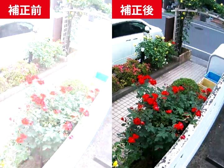 日本防犯設備の防犯カメラ・監視カメラは自動で撮影映像の明るさを調整することができますので、明暗の差の激しい場所でも適度な明るさに補正し、安定した映像を記録することができます。
